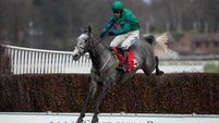 Bristol De Mai bids for Ayr success