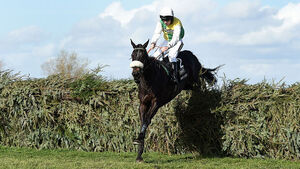 Many Clouds heads 87 still left in Aintree Grand National