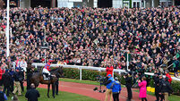 Sprinter Sacre completes fairytale comeback at  Cheltenham