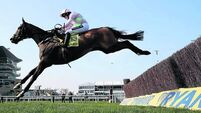 Last-minute Vautour comes good on the day