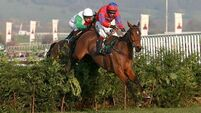 Balthazar King gunning for third win in Cross Country Chase