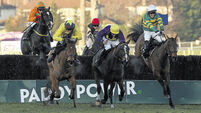 Carlingford Lough set to swerve Aintree Grand National