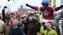 Retirement a possibility for Grand National hero