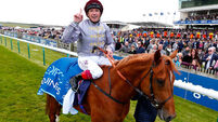 Galileo Gold and Minding primed for Classic glory