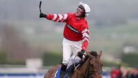 Last season's hero Coneygree a doubt for Hennessy Gold Cup