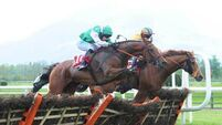 John Kiely eyes third Galway Hurdle