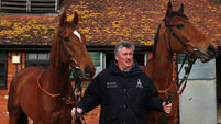 Paul Nicholls bullish about Silviniaco Conti prospects in Betfair Chase