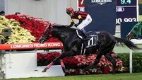 Today's tips: A Shin Hikari can justify the hype in Prince of Wales's Stakes at Royal Ascot