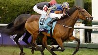 Found denies Golden Horn in Breeders' Cup Turf thriller
