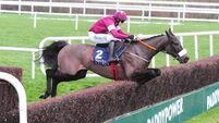 Four-miler at Cheltenham a possibility for No More Heroes