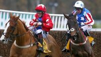 Special Tiara team decide not to appeal Tingle Creek result