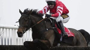 King George the preferred destination for Coneygree