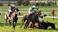 Riverside City and Jack Kennedy prevail in dramatic Troytown Handicap Chase in Navan