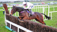 Vroum Vroum Mag motors into frame for Mares Hurdle