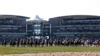 Highland Lodge may not run again before Grand National