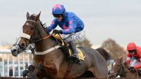 Cue Card 'deserves' a King George title