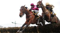 Nichols Canyon digs deep for Ryanair Chase success