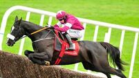 Don Cossack flawless on his return to action