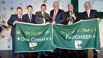 Horse Racing Ireland Award Winners Announced.