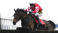 Coneygree back in picture for Hennessy Gold Cup