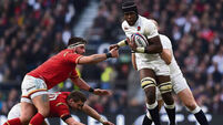 Maro Itoje a global star in the making