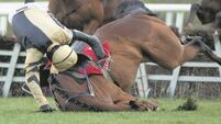 Vroum Vroum Mag looks up to the task at Punchestown