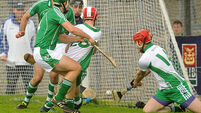 Gutsy Killeagh see off Muskerry