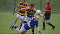 Dual mandate paying off nicely for Na Piarsaigh