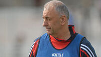 Young Cork side will play without fear, says Peadar Healy
