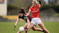 Transition over as Cork hit their stride