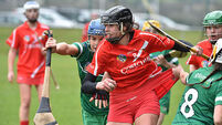 Limerick rising through the camogie ranks