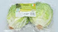 Top 8 salad bags tested