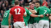 Match in 60 seconds: Ireland see off Wales to record emphatic win