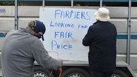 Further lay-offs as beef pickets continue