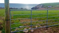 Property: Charming Ballycotton farm under the hammer