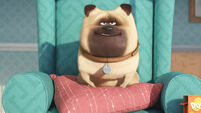 Movie Reviews: The Secret Life of Pets, Elvis & Nixon, Independence Day: Resurgence