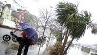 Government asked to provide a commercial rates break for storm damaged Cork businesses