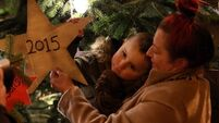 Lighting of 20th Christmas tree marks lives lost to drugs