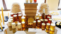 This is the beekeepers' time to show off their skills