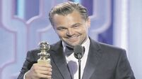 Quirky World: Heart-warming tale as fans show their mettle for Leonardo DiCaprio