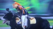 WATCH: Monkeys ride dogs and herd sheep in NFL halftime show