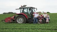 Family farm incomes to rise 5% next year: Teagasc review
