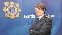 Crime gangs lose €8m cash and €65m drugs to Gardaí's anti-gangland operations