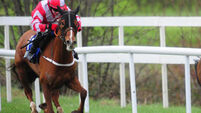 Precious little for Mr Average at Leopardstown