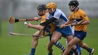 Waterford v Clare - Munster Senior Hurling League Round 4