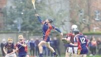 Early goals pave way as holders UL deliver in Fitzgibbon Cup