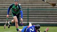 Mary I weather storm to seal Fitzgibbon final berth