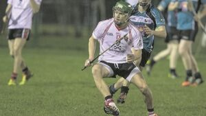 Lively UCC back on track in Fitzgibbon Cup