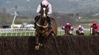 Wow factor was missing with Vautour at Ascot