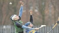 LIT 'need to improve' after narrow win over UCD in Fitzgibbon Cup